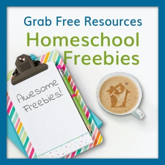 Facebook Follower + Homeschool Freebies = Success