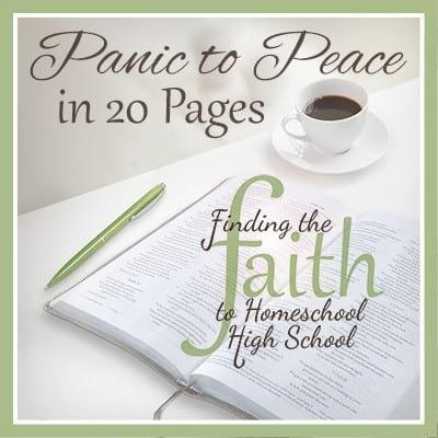 Panic to Peace in 20 Pages