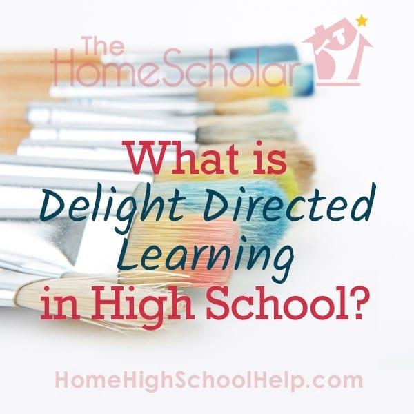 What is Delight Directed Learning in High School