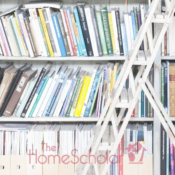 How to Teach Homeschool High School Literature