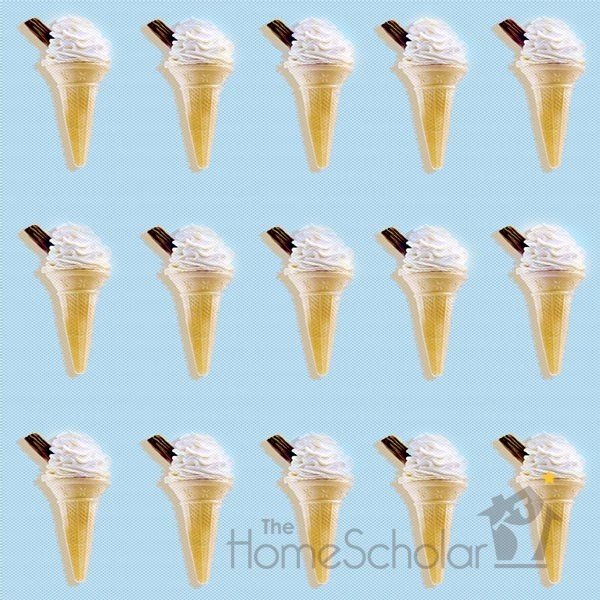 homeschool socialization