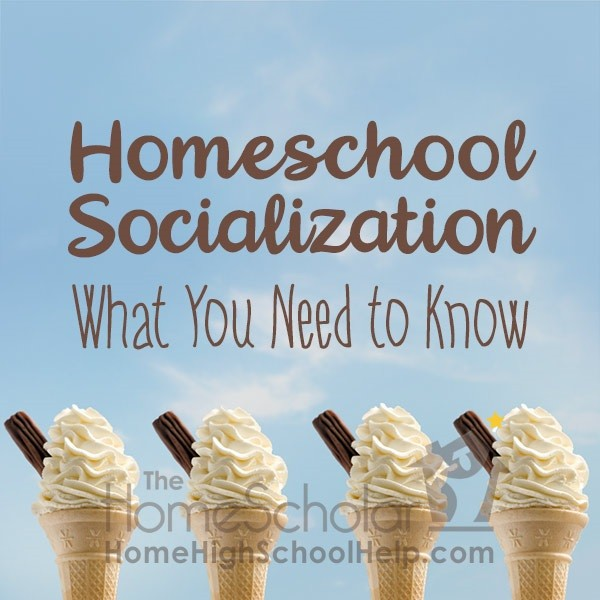 what you need to know about homeschool socialization