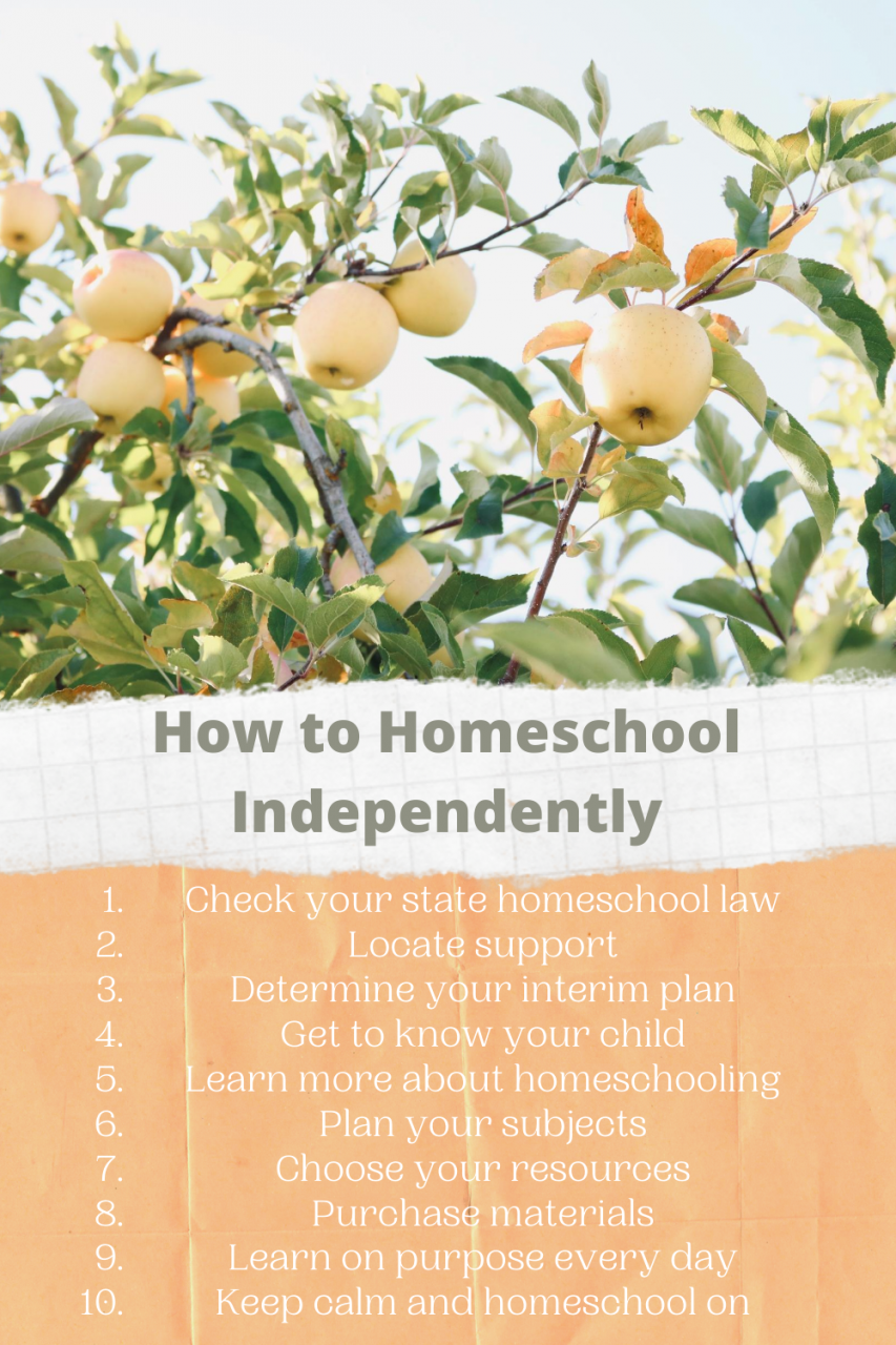 How to homeschool independently pin